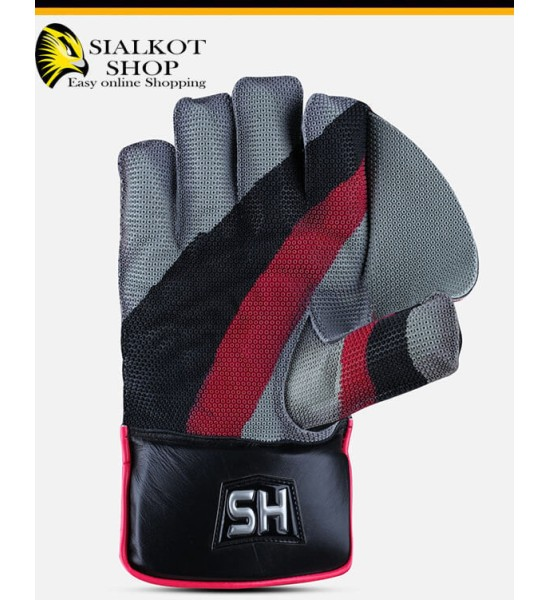 HS Sports wicket Keeping Gloves 2 Star