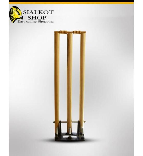 Cricket spring back stumps